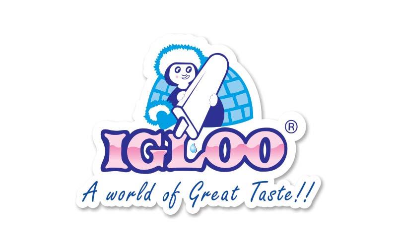 About Igloo